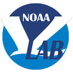 Noaa Virtual Lab Logo